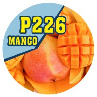 P226 | 90ml Magic Liquid Mango
