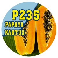 P235 | 90ml Magic Liquid Papaya/Kaktus