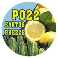 P022 - 90ml Magic Liquid Kaktus Breeze