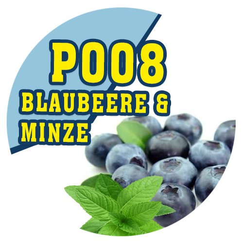 P008 | 90ml Magic Liquid Blaubeere & Minze